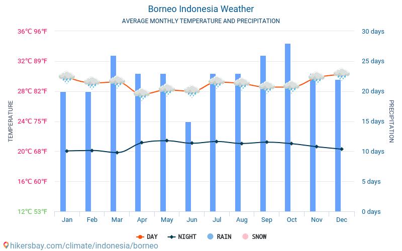 Βόρνεο - Οι μέσες μηνιαίες θερμοκρασίες και καιρικές συνθήκες 2015 - 2020 Μέση θερμοκρασία στο Βόρνεο τα τελευταία χρόνια. Μέση καιρού Βόρνεο, Ινδονησία. hikersbay.com
