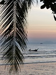 palm leaf, sunset, ao nang beach