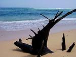 pantai, nliyep, malang