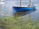 boat, beach, grass
