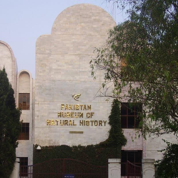 Pakistan Museum of Natural History