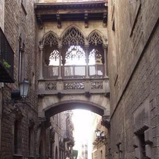 Gothic Quarter, Barcelona, spain , barcelona