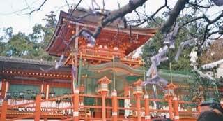 Kasuga-taisha, japan , kyoto