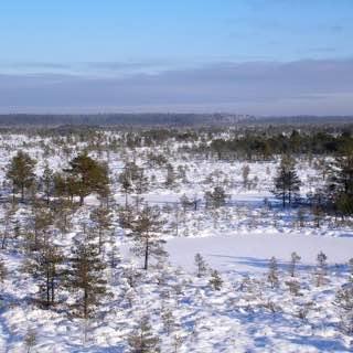 Põhja-Kõrvemaa Nature Reserve, estonia , lahemaanationalpark