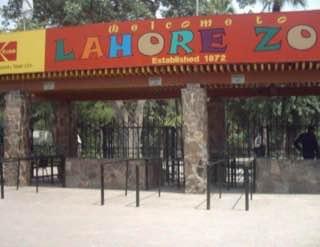 Lahore Zoo, pakistan , lahore