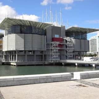 Lisbon Oceanarium, portugal , lisbon