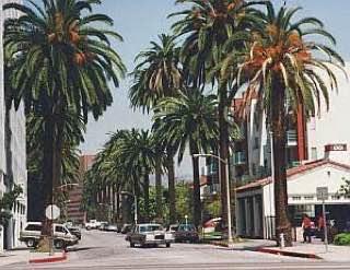 Beverly Hills, usa , losangeles
