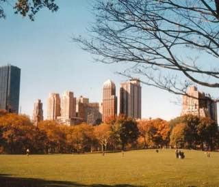 Central Park, usa , newyork