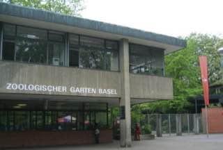 Zoo Basel, switzerland , riehen