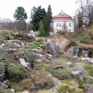 Botanical Garden of the University of Innsbruck, austria , stubaital