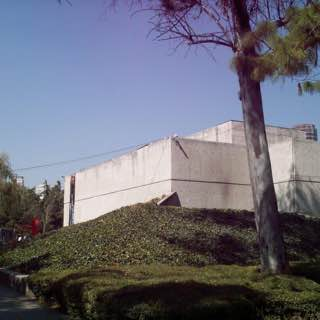 Museo Rufino Tamayo, Mexico City, mexico , teotihuacan