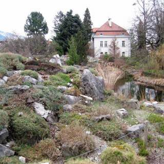 Botanical Garden of the University of Innsbruck, austria , tyrolwest