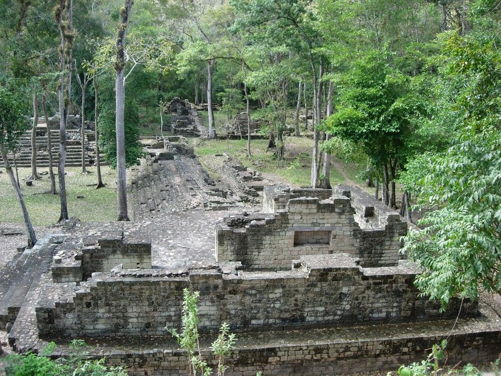 Image de Copan Ruins près de Copán. chris america geotagged central honduras copan exodus geotoolyuancc geolat14839026 geolon89139891
