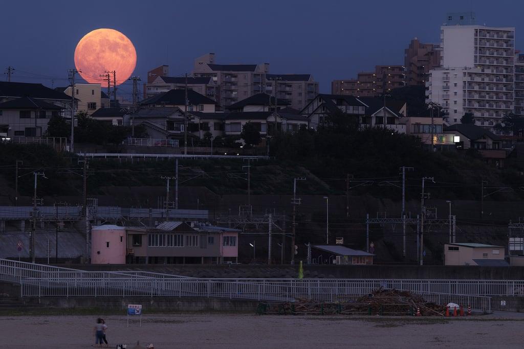 Hình ảnh của 大蔵海岸. park city sky moon building beach japan town twilight dusk sigma fullmoon 300mm merrill foveon 満月 黄昏 月 sd1 risingmoon 120300mm sigma120300mm sigma120300mmf28 sigma12030028 大蔵海岸 supermoon sd1merrill