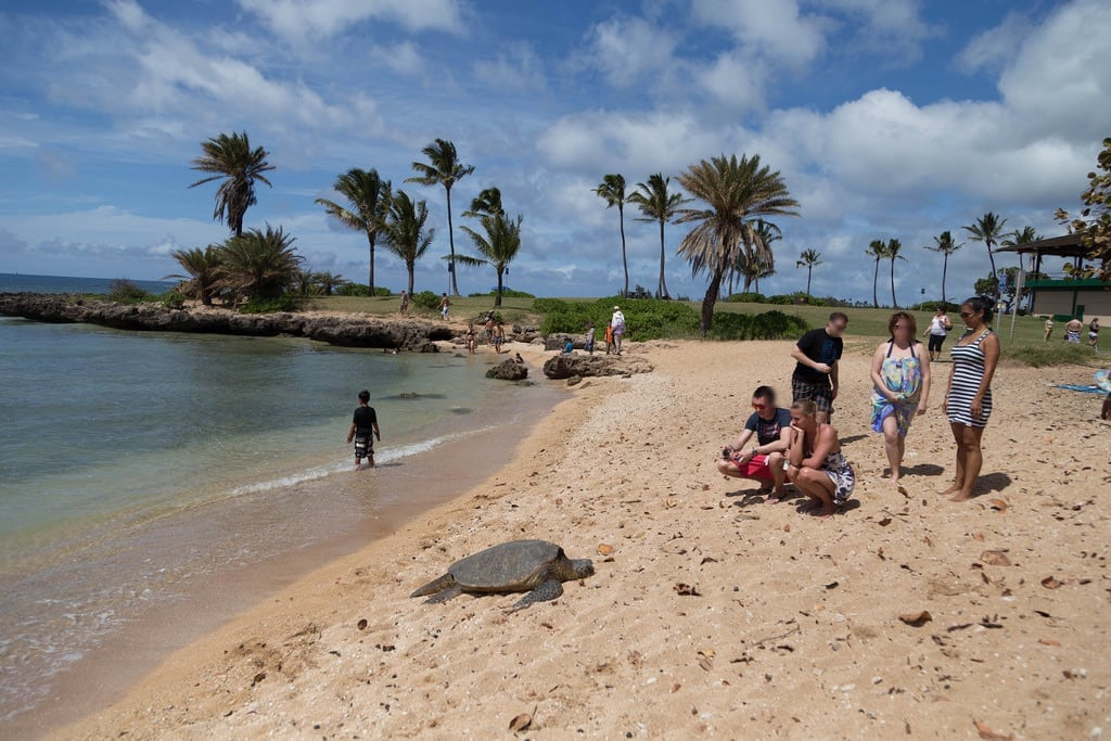 Kaiaka Beach Park 沙滩 的形象. hawaii unitedstates haleiwa bluehawaiiphototour