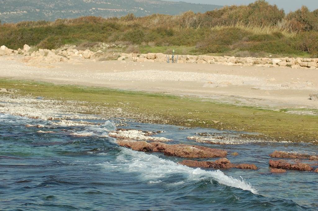 תמונה של חוף באורך של מטר 5353. israel galilee ישראל גליל achziv אכזיב ahziv הגיליל david55king