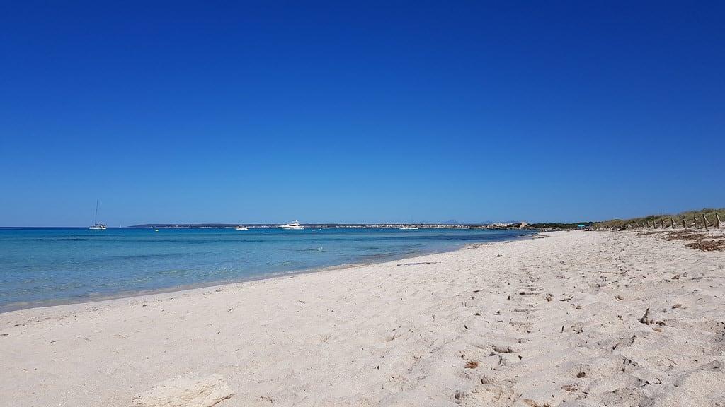 Εικόνα από Platja de Es Trenc Es Trenc Beach.