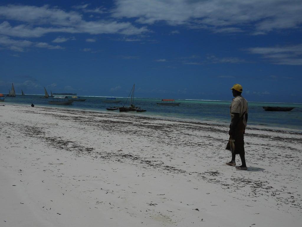 Bilde av Dream Bay Stranden med en lengde på 433 meter.