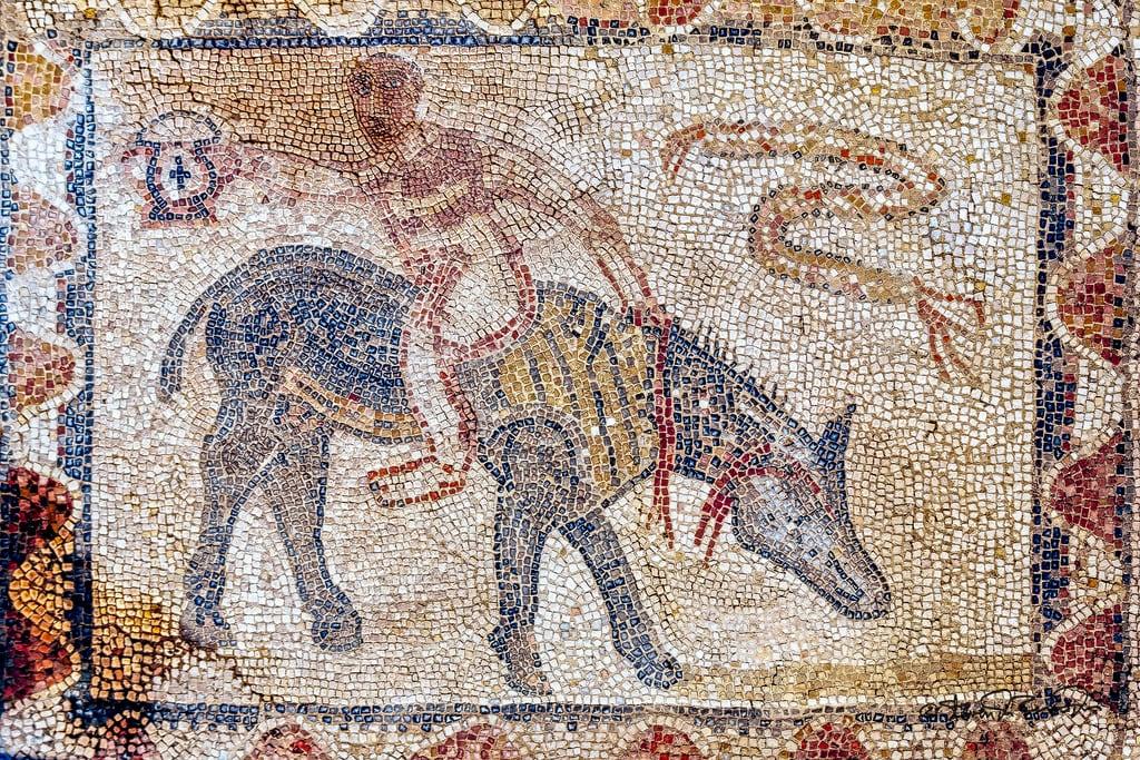 Imagine de Mosaic. cstevendosremedios volubilis meknèstafilalet morocco ma