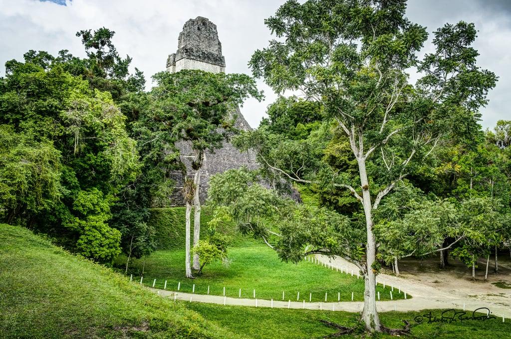 Image of Tikal near Tikal. cstevendosremedios tikal petén guatemala gt