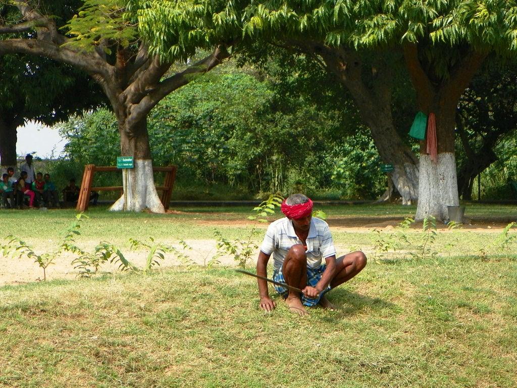 Hình ảnh của Nalanda University ruins gần Silao. 2015 india bihar people work man plant tree