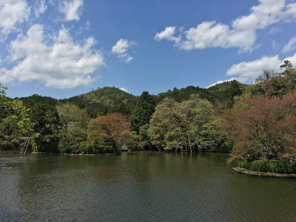 Billede af Ryōanji Temple. japan kyoto ryōanji temple
