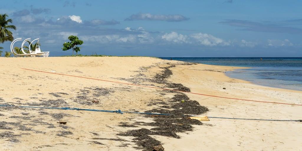 Image de Playa Ballenas. 2016 republicadominicana quisqueya hispaniola caribe caribbean coast samana lasterrenas beach sand bench deckchair