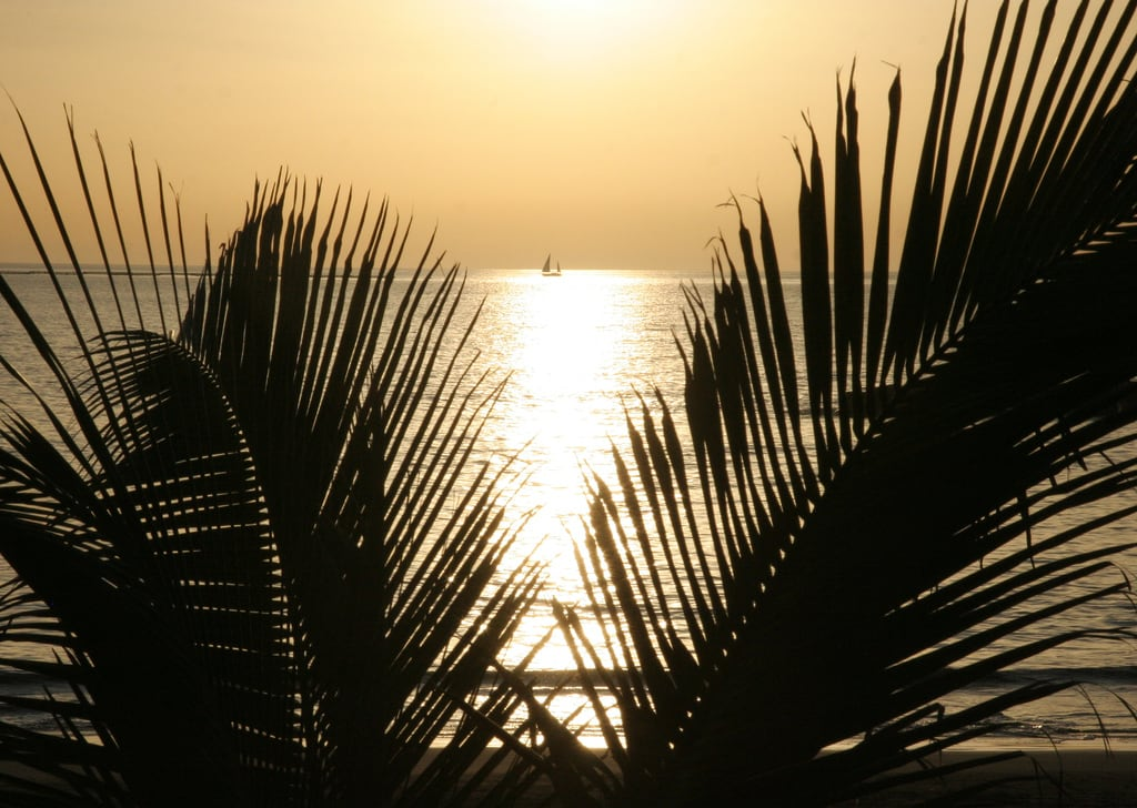 Image de Playa de Fañabe près de Playa de las Américas. tenerife fanabebeach sunset sailing ortegalrestaurant evening beach sea sail romantic hisgett canaryislands canary islands spain