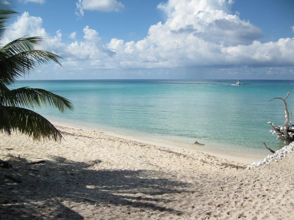 תמונה של Playa Palancar. cozumel