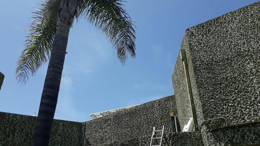 Xochicalco の画像.