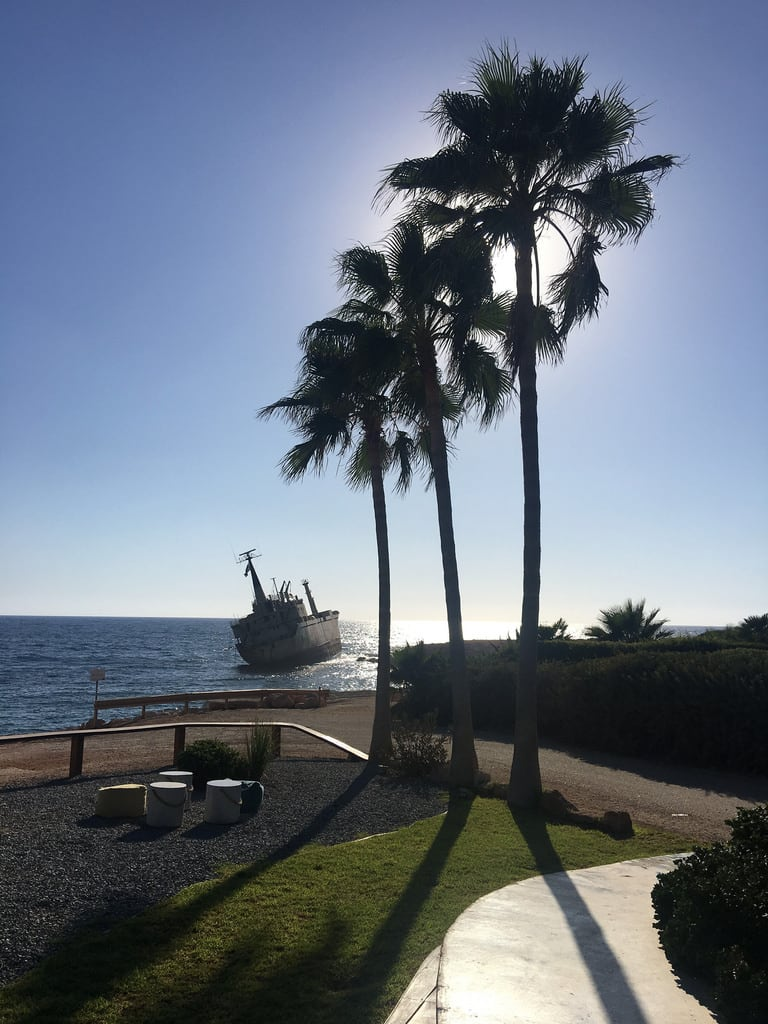 Imagen de Edro III. coralbay cyprus edroiii flora palmtree pathos peyia ship shipwreck sun trees