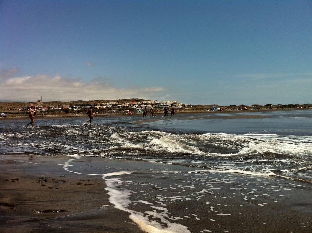La Tejita görüntü. mar exterior playa paisaje perro tenerife diurna
