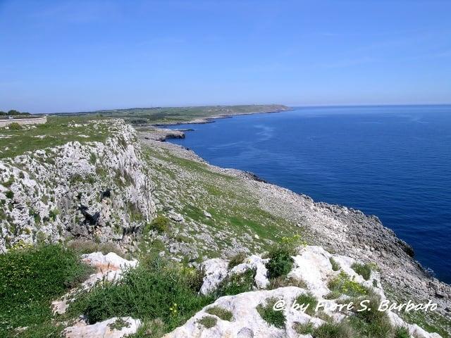 Grotta Zinzulusa の画像. italy marina castro salento puglia lecce grotta zinzulusa