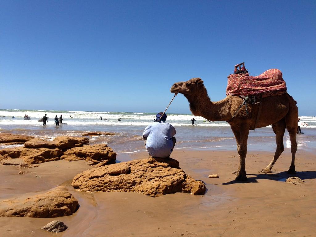 Attēls no Plage de Taghazout pie Taghazout. beach surf surfing agadir morocco taghazout