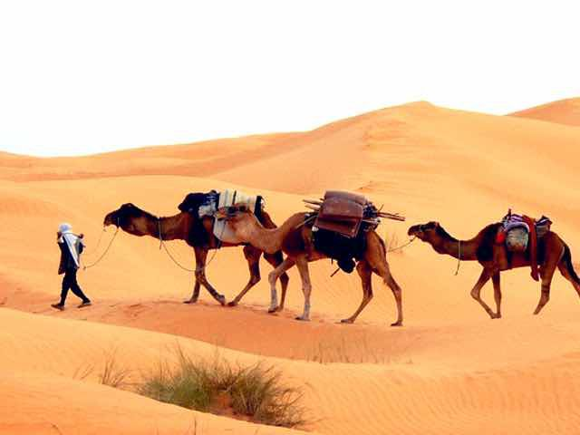 Best places to visit in  Western Sahara