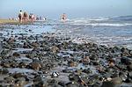 Zdjęcie:   Hiszpania  Wyspy Kanaryjskie  Teneryfa  Playa Paraiso  (maspalomas, beach, gran canaria)